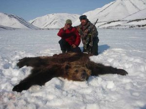 bear hunt in russia