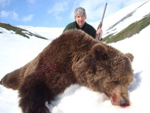 brown bear hunting in russia with kulu safaris hunting outfitter