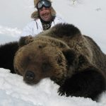 brown bear hunting