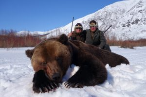Spring brown bear hunt in Magadan region with Kulu Safaris