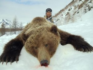 Trophy hunting in Magadan region, brown bear hunt