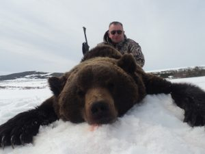 Guided brown bear hunts in Magadan region with Kulu Safaris