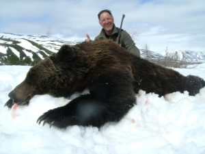brown bear hunting guided hunt