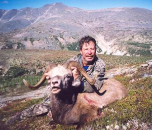 Magadan snow sheep hunt, Kulu Safaris
