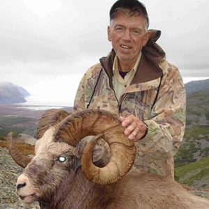 snow sheep hunting in the mountains of russia