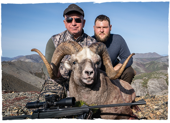 snow sheep and brown bear hunting outfitter